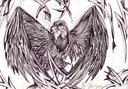 tn_gallery_30535_149_215638.jpg