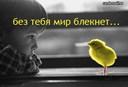 tn_gallery_8246_497_29613.jpg
